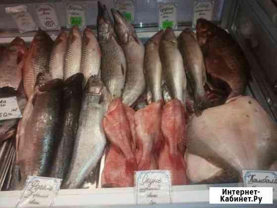 Разнорабочий в рыбный магазин Санкт-Петербург