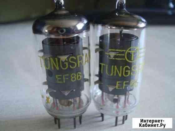 EF-86,EF-80,EF-40,6SF5,6F5GM радиолампы Курск