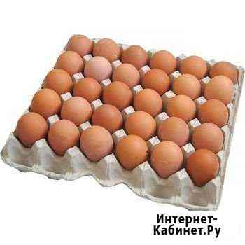 Яйцо куриное Орёл