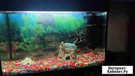 Продам аквариум Орёл
