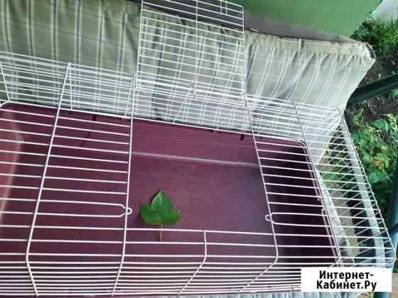 Клетка для кроликов,морских свинок Самара