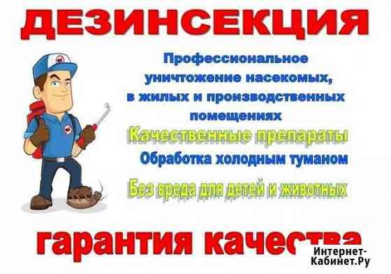 Дезинсекция Томск