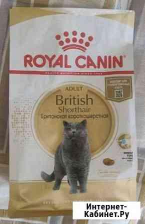 Сухой корм Royal Canin для взрослых кошек Калининград