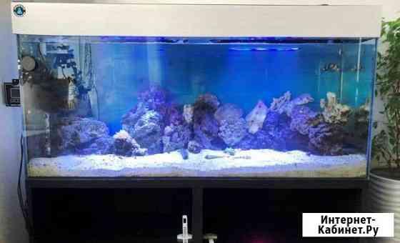 Морской аквариум 250 литров Екатеринбург
