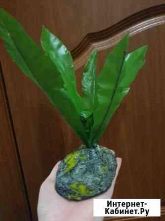 Искусственное растение в аквариум/террариум/ декор Липецк