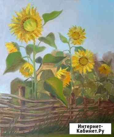 Картина Подсолнухи, холст, масло, 50*60 см Калининград