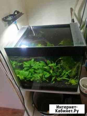 Аквариум 40 литров Липецк