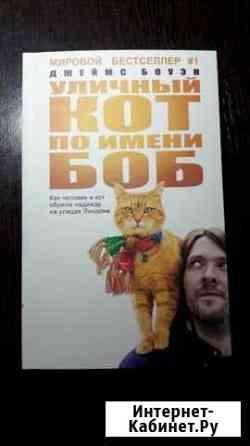 Уличный кот по имени Боб Зеленокумск