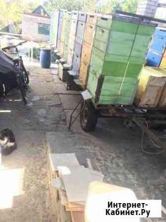 Улики лежаки Волгоград