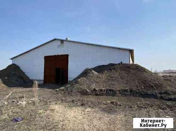 Овощехранилище 1500 кв.м климатическая установка Кормиловка