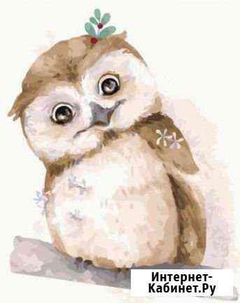 Картина по номерам зимняя сова Архангельск