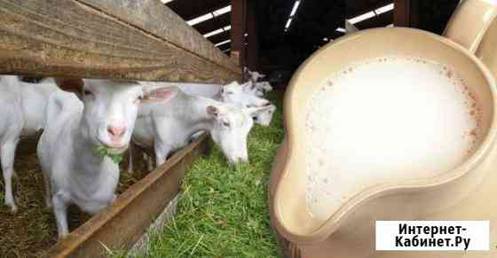 Козье молоко Саратов