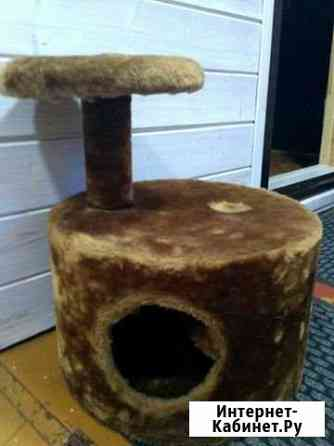 Домик для кошки Нижний Новгород