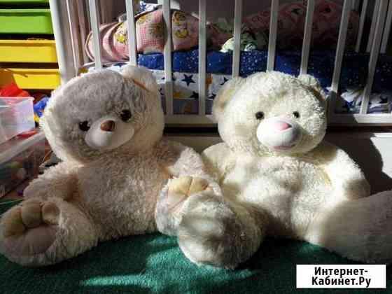 Большие мишки медведи Екатеринбург