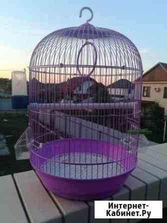 Клетка для попугая Ессентуки