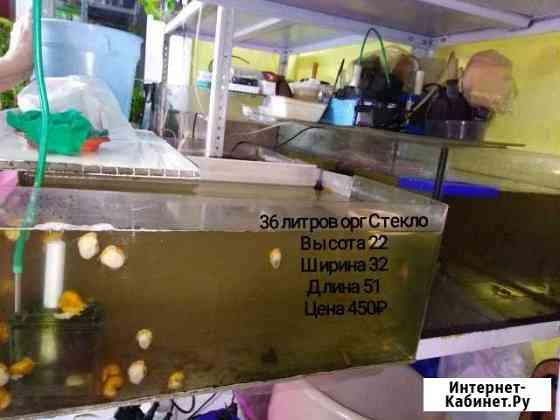 Аквариум Иркутск