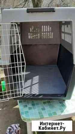 Переноска для крупных собак,делалась под заказ Калининград