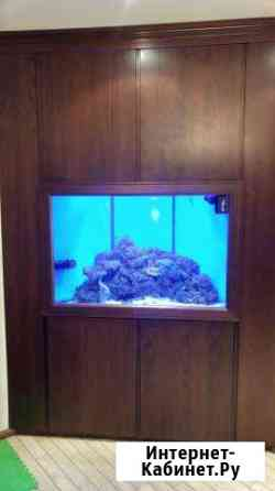 Морской аквариум 500 л. с рыбами и оборудованием Санкт-Петербург