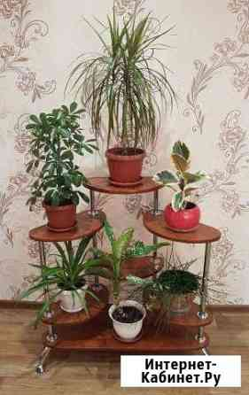 Подставка для растений Елена Курган