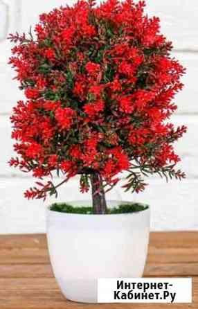 Бонсай Пышное деревце с цветами 12*25 см Волжский