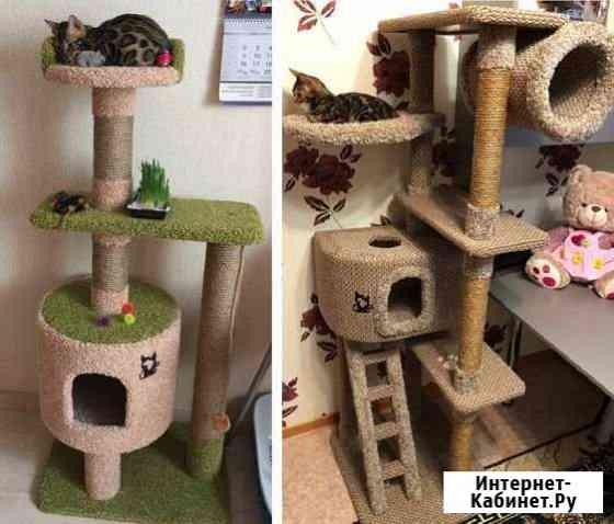 Домик для кошки Москва
