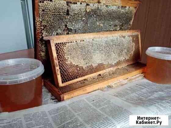 Мед меняю Вурнары