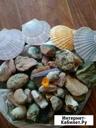 Камни и ракушки для аквариума Хабаровск