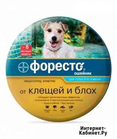 Ошейник для собак форесто Липецк