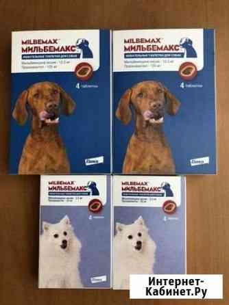 Мильбемакс для собак Москва