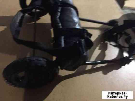 Инвалидная коляска для собак: такса, болонка, шпиц Уйское