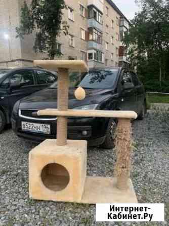 Когтеточка Екатеринбург