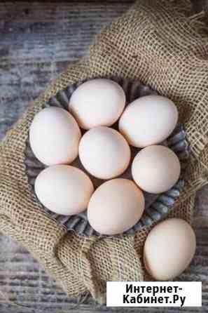 Яйца Авдон