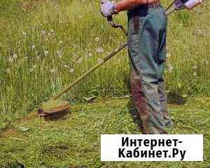Покос травы Киров