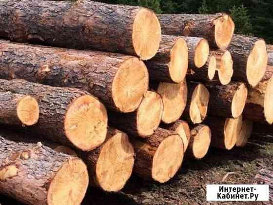 Бригада для валки леса Байкит