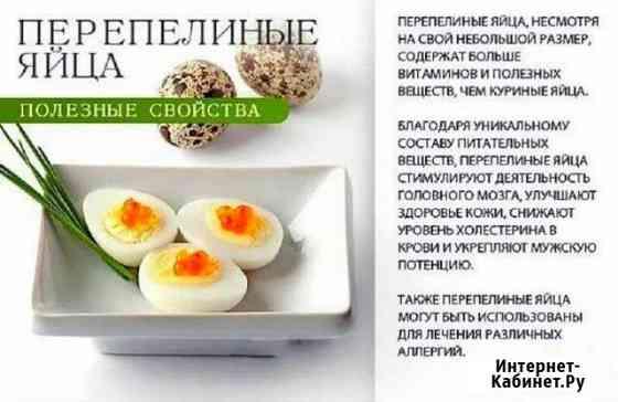 Перепелиное яйцо Димитровград