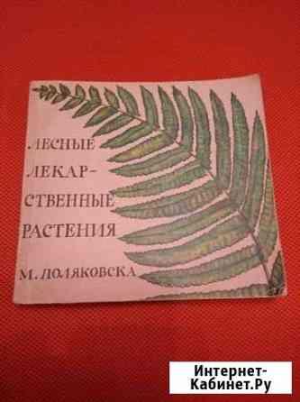 Лекарственные растения. М Поляковска Владикавказ