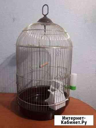 Клетка для попугая Канск