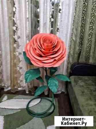 Ростовые цветы Белгород