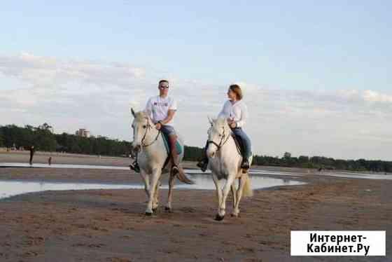 Конные прогулки и обучение верховой езде Санкт-Петербург