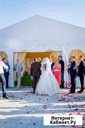 Организация свадеб, торжеств, мероприятий Курск