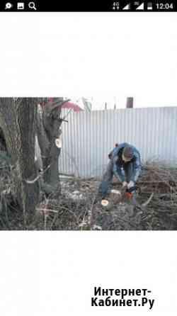 Спил деревьев кустарников на участке Смоленск