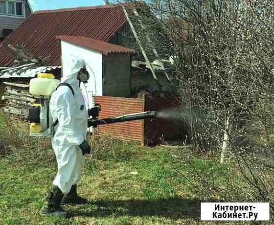 Уничтожение насекомых грызунов запахов дезинфекция Архангельск