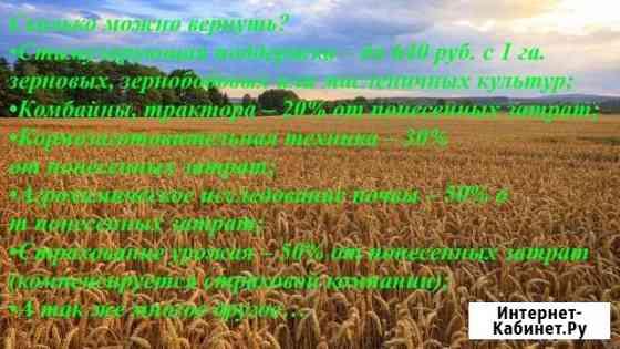 Помощь в оформлении сельскохозяйственных субсидий Омск