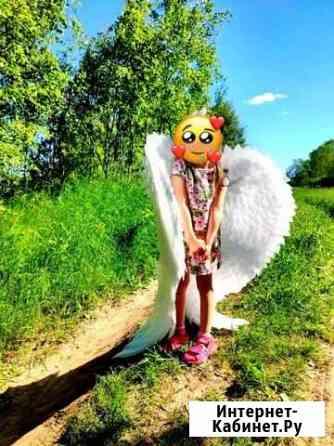 Крылья ангела на прокат Ярославль
