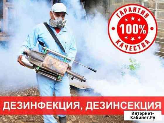 Уничтожение клопов тараканов грызунов Калининск