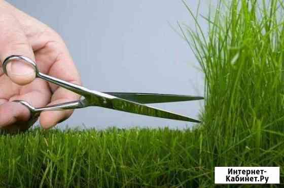 Покос травы (леска / нож) Вологда