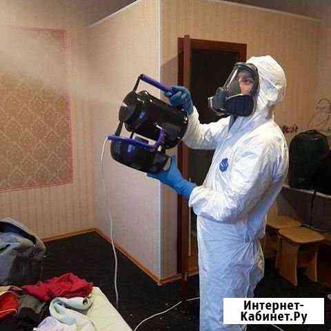 Уничтожение тараканов,клещей,клопов Иваново