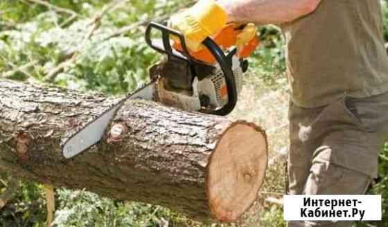 Спил деревьев Ростов-на-Дону