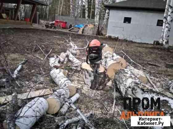 Кронирование, спил, удаление и валка деревьев Москва