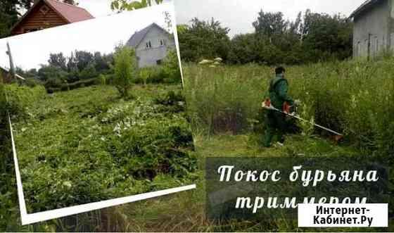 Покос травы/бурьяна. Спил деревьев Калининград